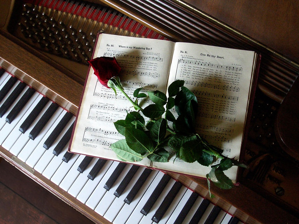 L'art d'être un musicien avec ses vices et ses vertus